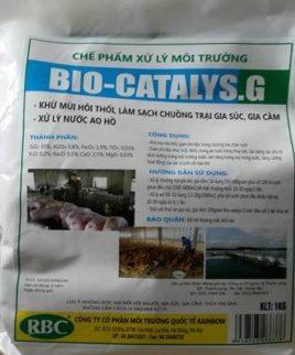 bio_catalys_g_53fab04f08aef