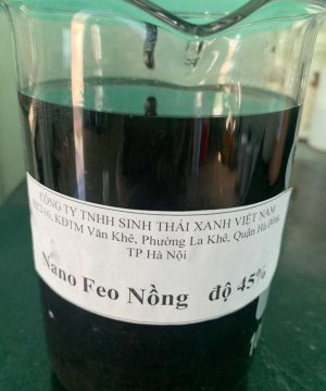 Nano sắt oxit ( FeO) 45%